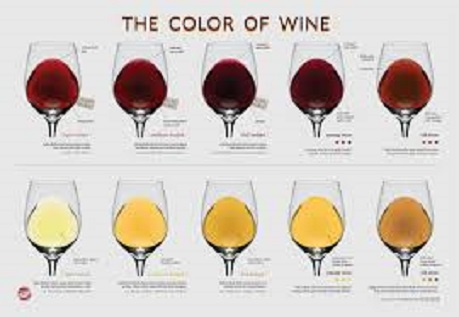 Wine Descriptors Reconsidered